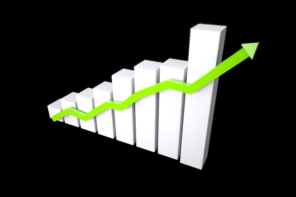 Online marketingkonsulent med øje for vækst